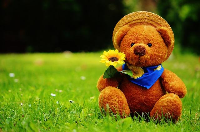 teddy-bear-792273_640